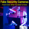 pros and cons of dummy security cameras