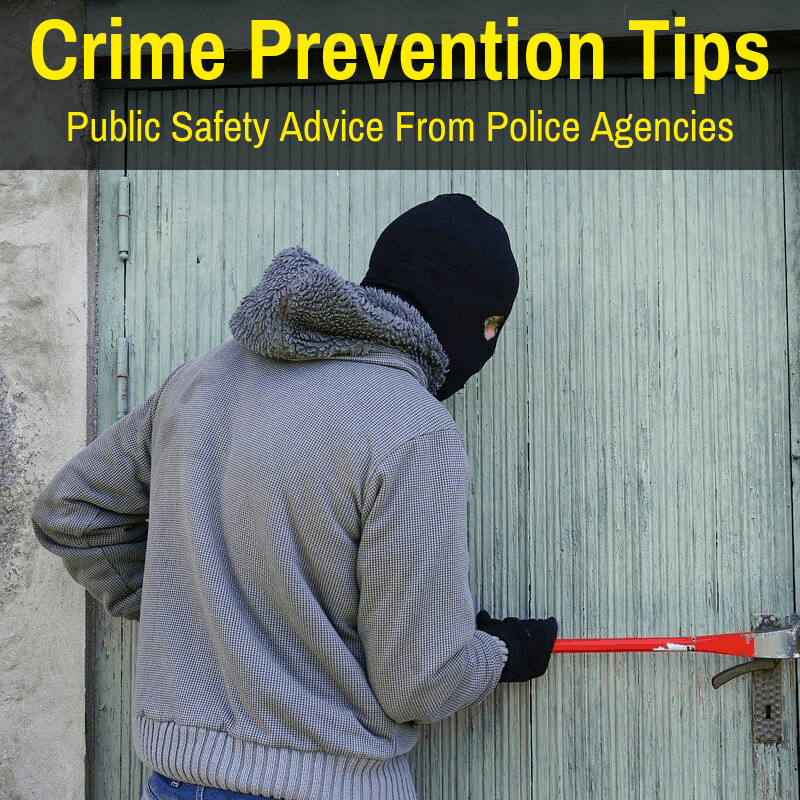Crime prevention strategies from police