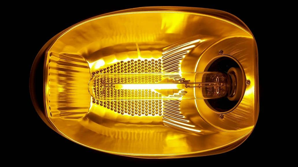 A security light bulb