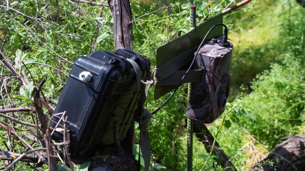 trail camera with vantage point