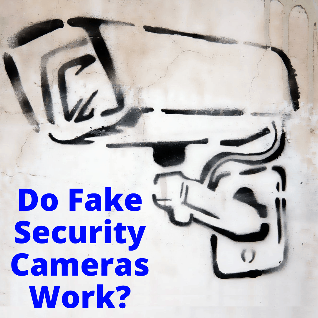 Do Fake Security Cameras Work